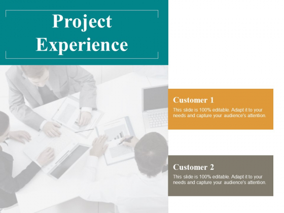 Project Experience Ppt PowerPoint Presentation Show Backgrounds