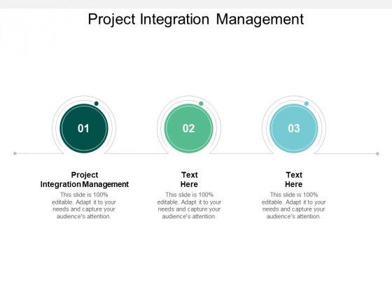 Project Integration Management Ppt PowerPoint Presentation Gallery Slides Cpb