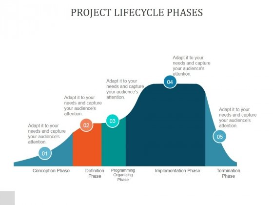 Project Lifecycle Phases Ppt PowerPoint Presentation Information