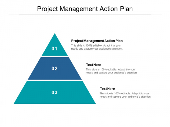 Project Management Action Plan Ppt PowerPoint Presentation Icon Graphics Design Cpb