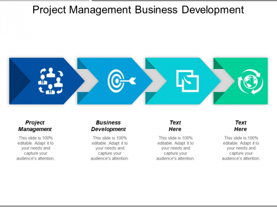 Project Management Business Development Ppt PowerPoint Presentation Pictures Guidelines