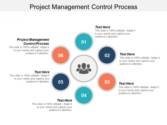 Project Management Control Process Ppt PowerPoint Presentation Gallery Slideshow