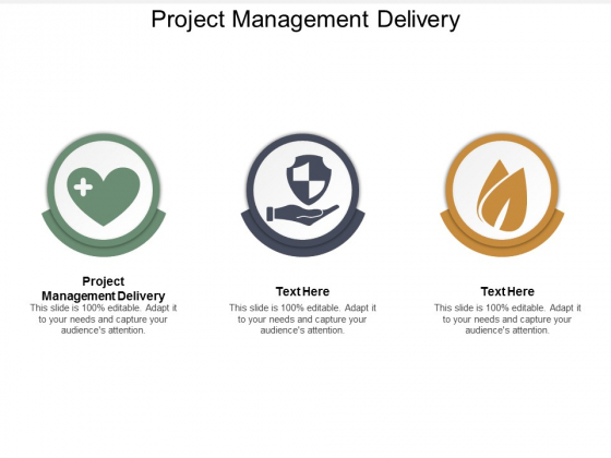 Project Management Delivery Ppt Powerpoint Presentation Infographics Backgrounds Cpb