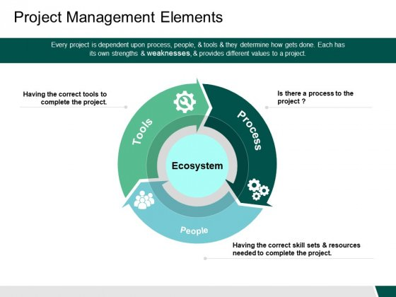 Project Management Elements Ecosystem Ppt PowerPoint Presentation Gallery Microsoft
