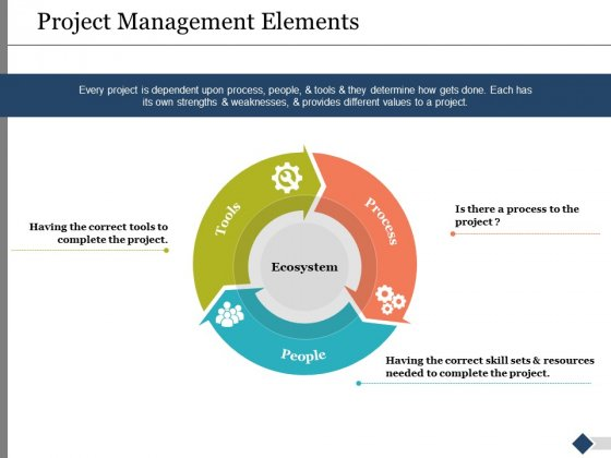 Project Management Elements Ppt PowerPoint Presentation Ideas Background Images