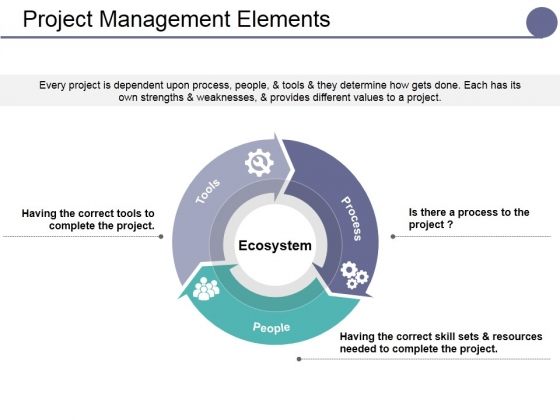 Project Management Elements Ppt PowerPoint Presentation Layouts Design Ideas