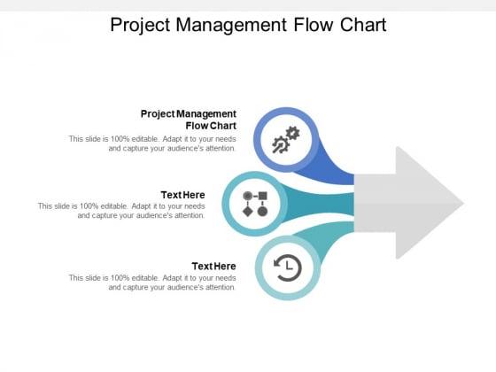 Project Management Flow Chart Ppt PowerPoint Presentation Show Pictures