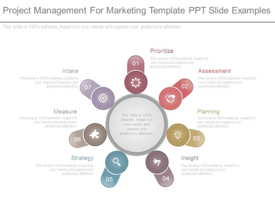 Project Management For Marketing Template Ppt Slide Examples