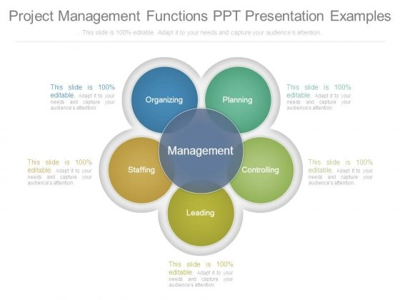 Project Management Functions Ppt Presentation Examples