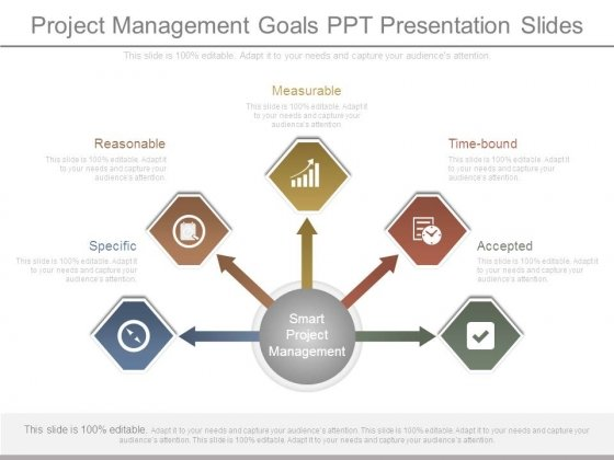 Project Management Goals Ppt Presentation Slides
