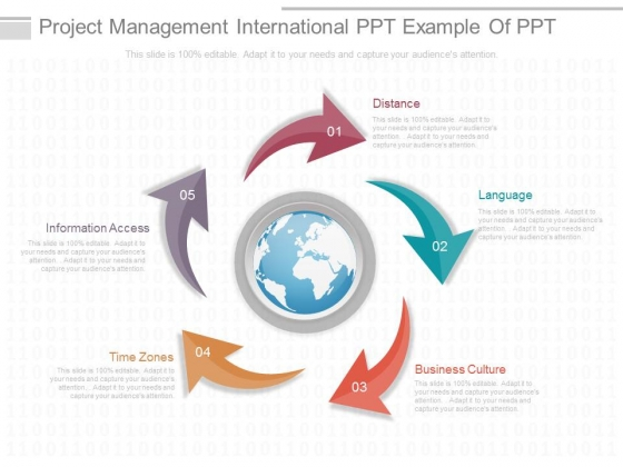 Project Management International Ppt Example Of Ppt