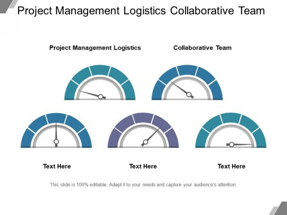 Project Management Logistics Collaborative Team Ppt PowerPoint Presentation Professional Graphics Pictures