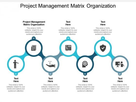 project management matrix organization ppt powerpoint presentation outline diagrams cpb