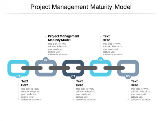 Project Management Maturity Model Ppt PowerPoint Presentation File Graphic Images Cpb Pdf