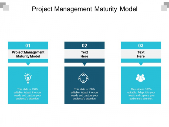 Project Management Maturity Model Ppt PowerPoint Presentation Slides Visuals Cpb