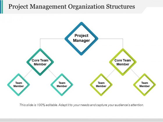 Project Management Organization Structures Ppt PowerPoint Presentation File Slides