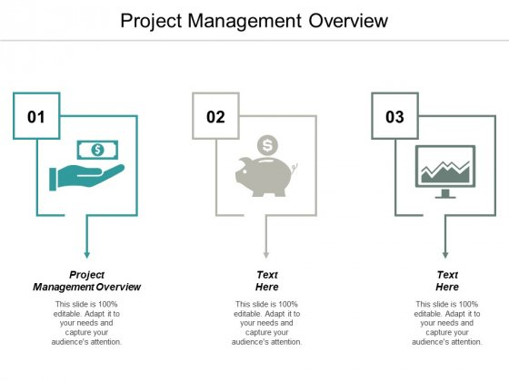 Project Management Overview Ppt PowerPoint Presentation Ideas Layouts Cpb