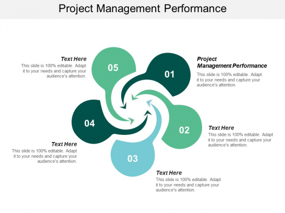Project Management Performance Ppt PowerPoint Presentation Layouts Background Cpb