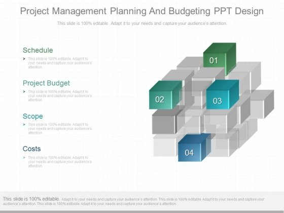 Project Management Planning And Budgeting Ppt Design