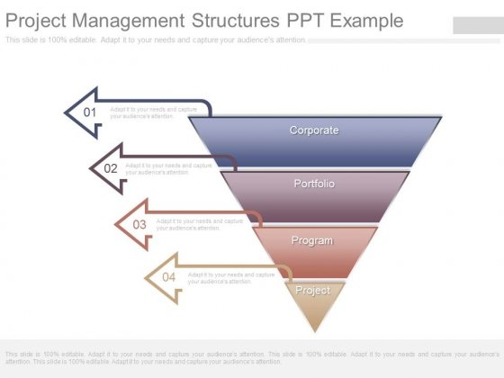 Project Management Structures Ppt Example