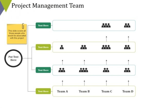 Project Management Team Ppt PowerPoint Presentation Gallery Background