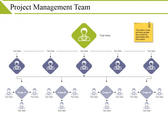 Project Management Team Ppt PowerPoint Presentation Show Images