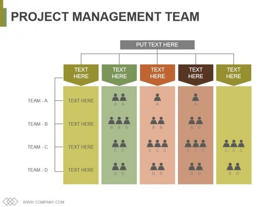 Project Management Team Template 2 Ppt PowerPoint Presentation File Graphics