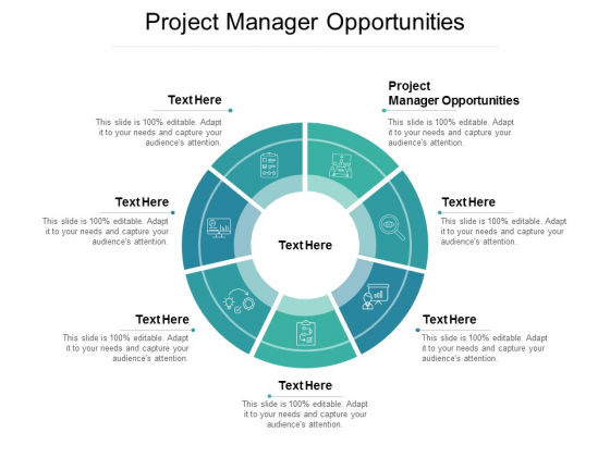 Project Manager Opportunities Ppt PowerPoint Presentation Visual Aids Background Images Cpb