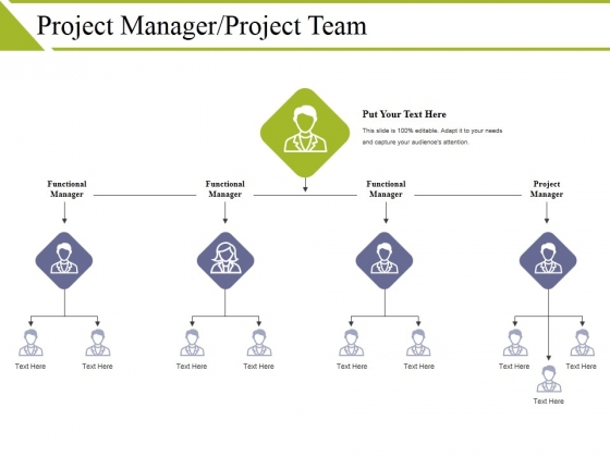 Project Manager Project Team Template 1 Ppt PowerPoint Presentation Infographics Templates