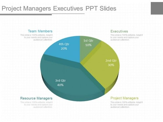 Project Managers Executives Ppt Slides