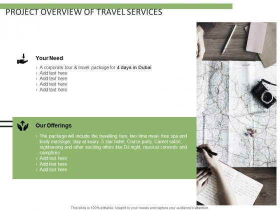 Project Overview Of Travel Services Ppt PowerPoint Presentation Ideas Information