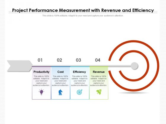 Project Performance Measurement With Revenue And Efficiency Ppt PowerPoint Presentation Infographics Elements PDF