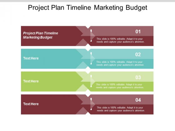 Project Plan Timeline Marketing Budget Ppt PowerPoint Presentation Show Cpb
