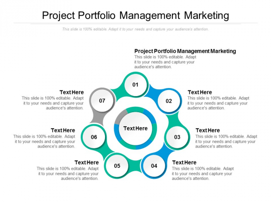Project Portfolio Management Marketing Ppt PowerPoint Presentation Pictures Background Cpb
