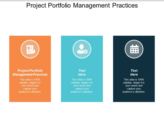 Project Portfolio Management Practices Ppt PowerPoint Presentation Layouts Graphics Template Cpb