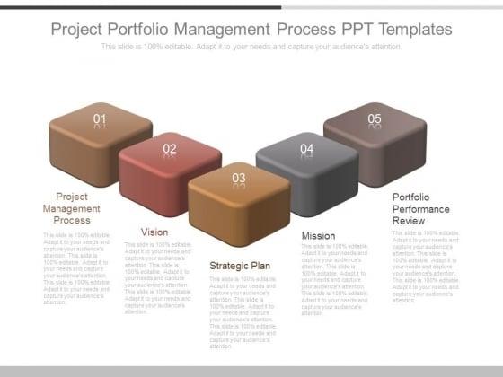 Project Portfolio Management Process Ppt Templates