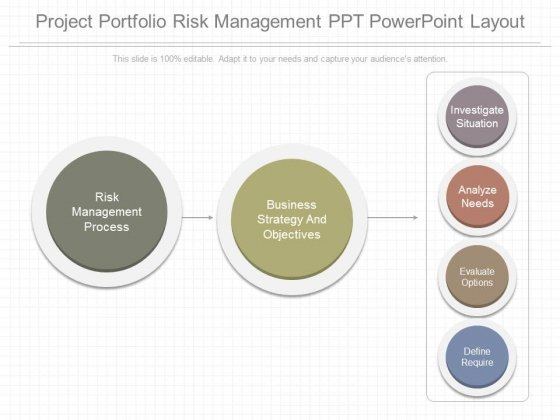 Project Portfolio Risk Management Ppt Powerpoint Layout