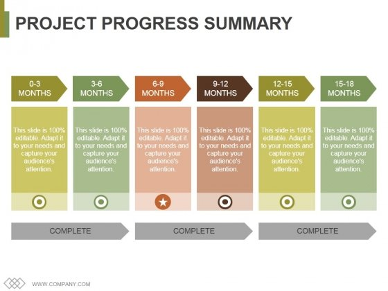 Project Progress Summary Template 2 Ppt PowerPoint Presentation Model Example File