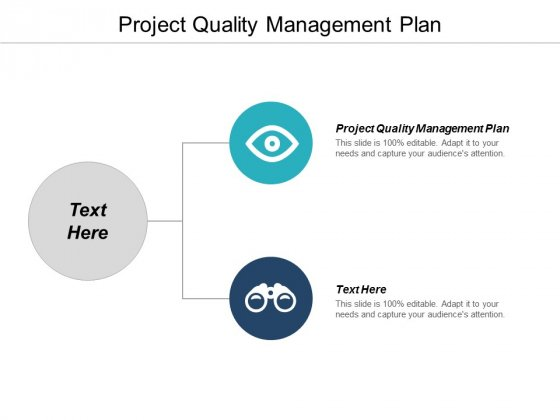 Project Quality Management Plan Ppt PowerPoint Presentation Styles Background Designs Cpb