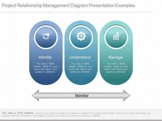Project Relationship Management Diagram Presentation Examples