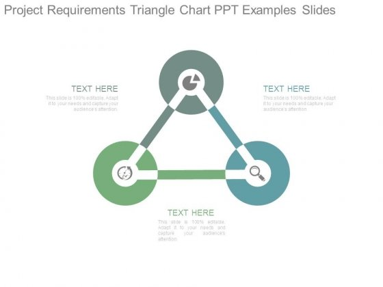 Project Requirements Triangle Chart Ppt Examples Slides