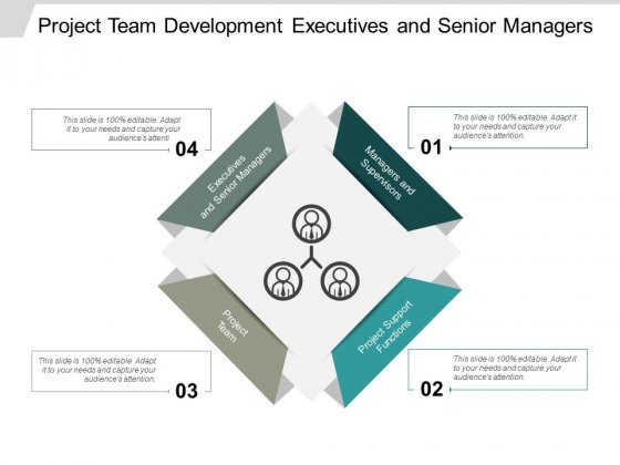 Project Team Development Executives And Senior Managers Ppt Powerpoint Presentation Ideas Maker