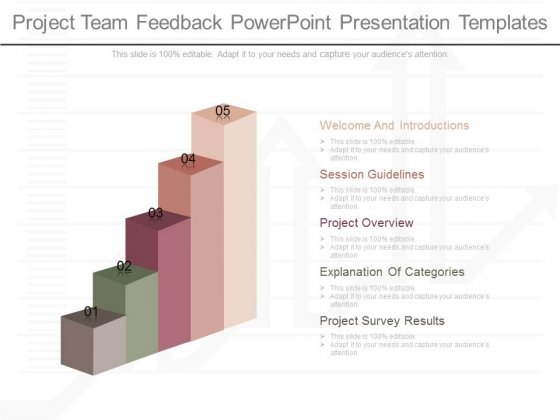 Project Team Feedback Powerpoint Presentation Templates