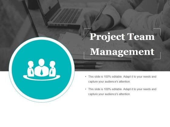 Project Team Management Ppt PowerPoint Presentation Slides Background Image