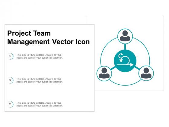 Project Team Management Vector Icon Ppt PowerPoint Presentation Summary Portfolio