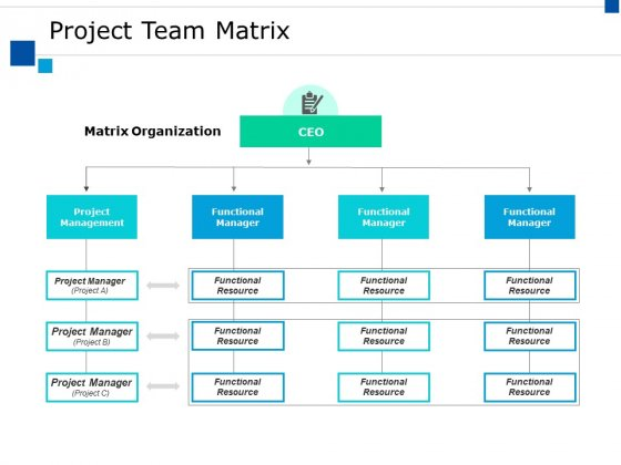 Project Team Matrix Ppt PowerPoint Presentation Visual Aids Backgrounds