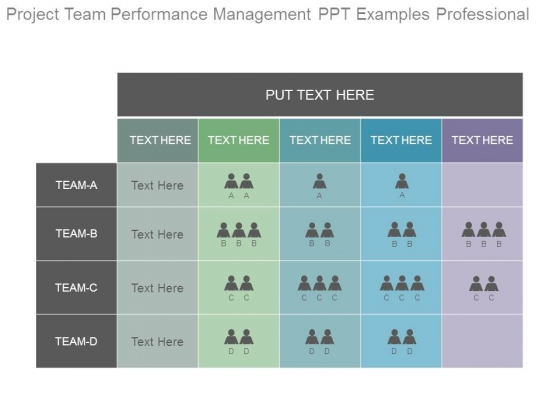 Project Team Performance Management Ppt Examples Professional