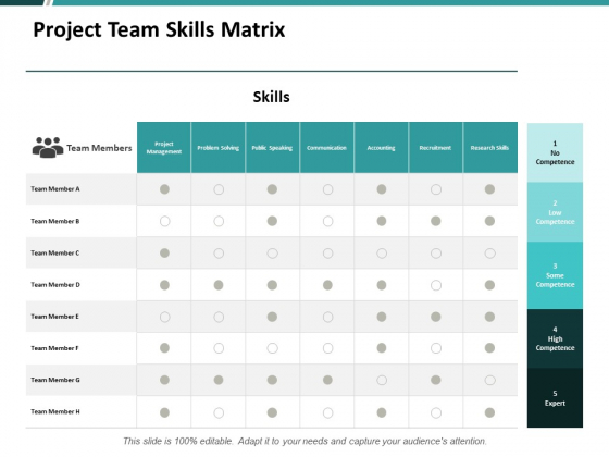 Project Team Skills Matrix Ppt PowerPoint Presentation Pictures Layout