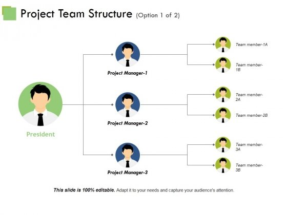 Project Team Structure Ppt PowerPoint Presentation Inspiration Show