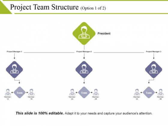 Project Team Structure Template 1 Ppt PowerPoint Presentation Icon Graphics Example